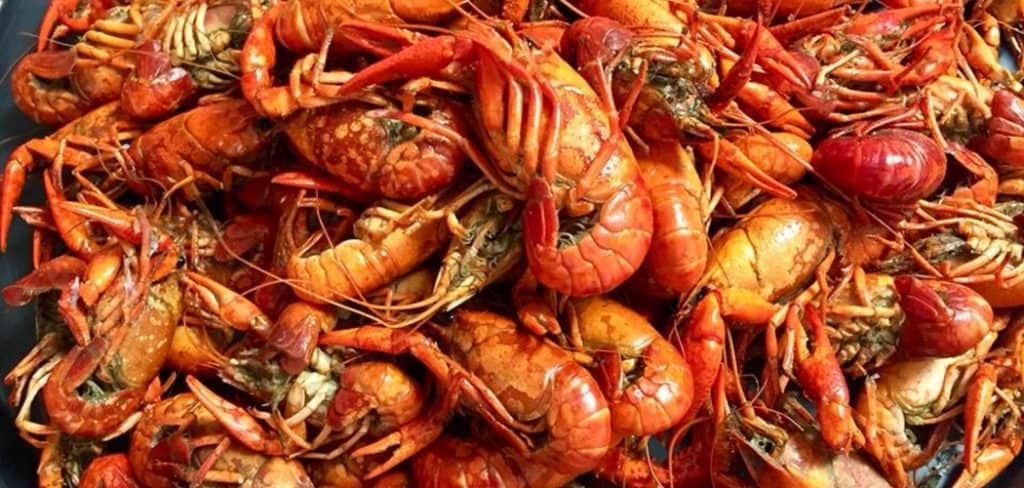 Can I Eat Crawfish While Pregnant