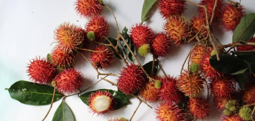 how to eat lychee